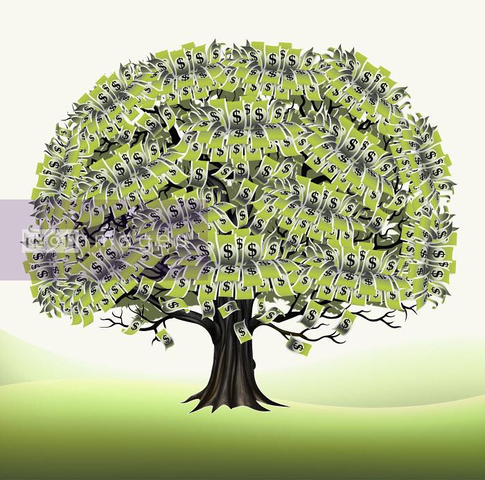 Dollar bills growing on tree - Dollar bills growing on tree - Magictorch