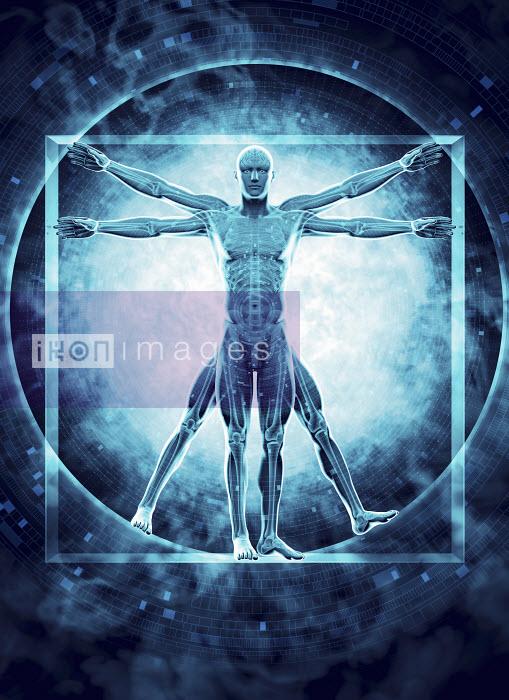 Futuristic transparent Vitruvian Man with brain, skeleton and DNA coding - Futuristic transparent Vitruvian Man with brain, skeleton and DNA coding - Magictorch