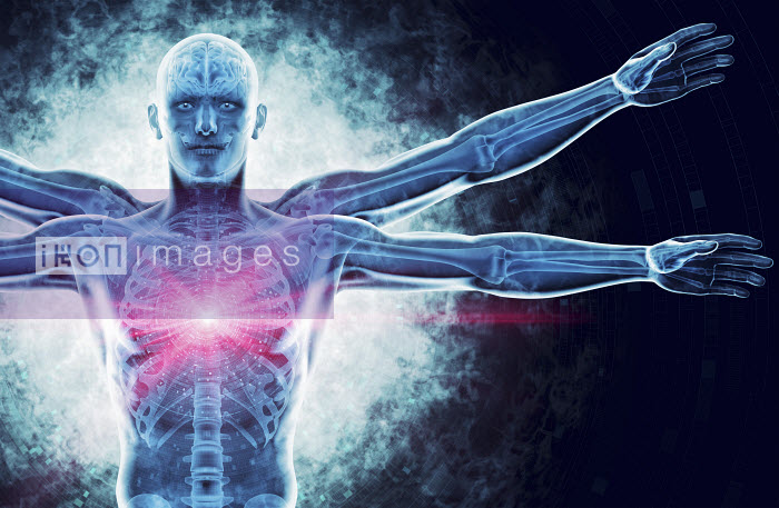 Close up of glowing futuristic transparent Vitruvian Man with brain, skeleton and DNA coding - Close up of glowing futuristic transparent Vitruvian Man with brain, skeleton and DNA coding - Magictorch