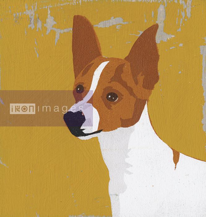 Portrait of American Toy Terrier - Portrait of American Toy Terrier - Andy Bridge