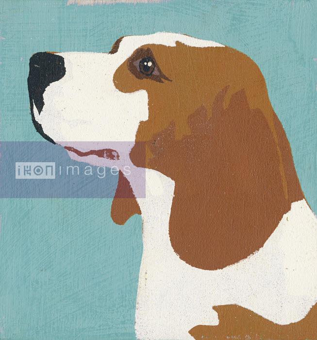 Portrait of Beagle - Portrait of Beagle - Andy Bridge