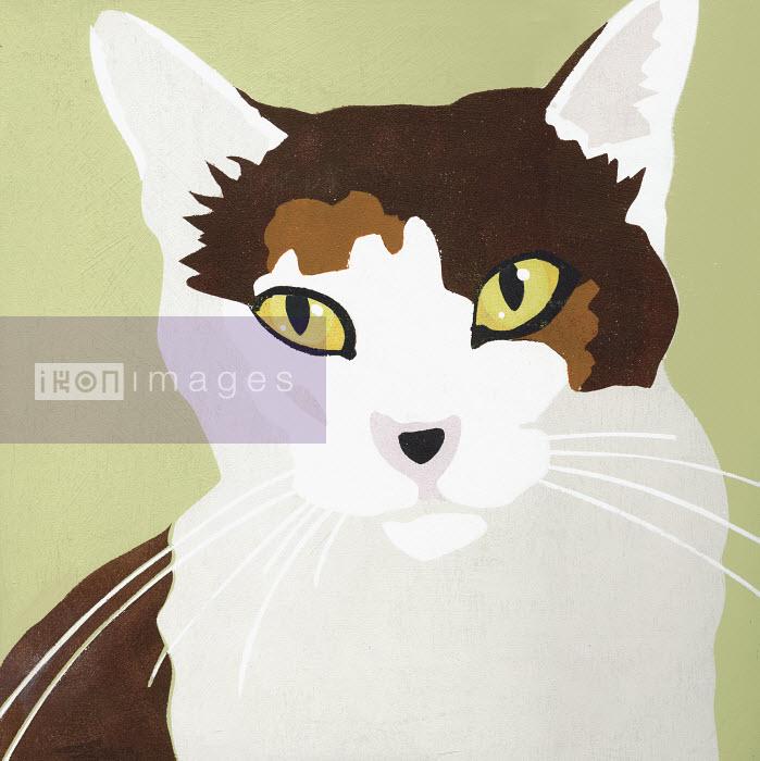 Portrait of cat - Portrait of cat - Andy Bridge