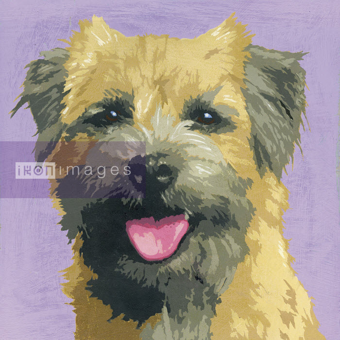 Painting of Border Terrier dog - Andy Bridge