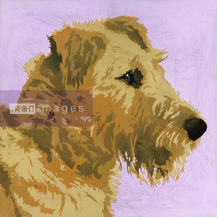 Painting of Irish Terrier dog - Andy Bridge