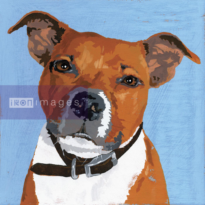 Painting of Pit Bull Terrier dog - Andy Bridge