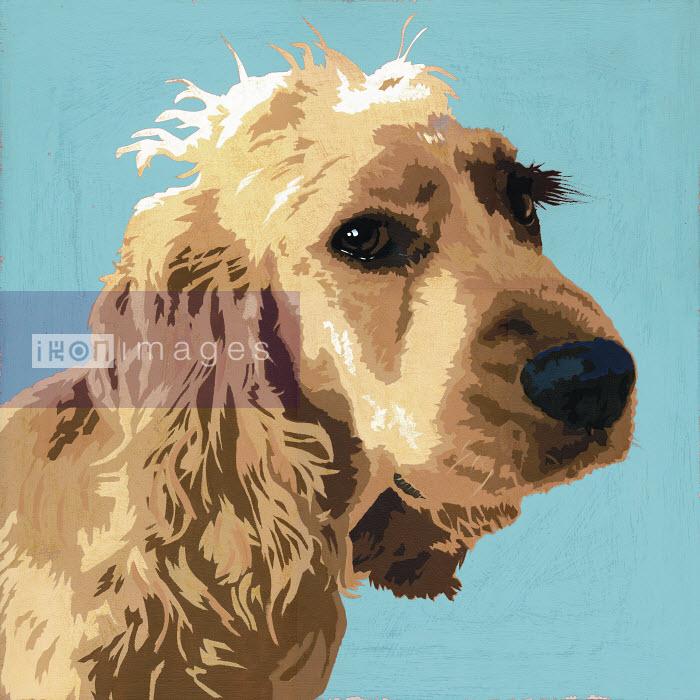 Painting of Cocker Spaniel dog - Andy Bridge