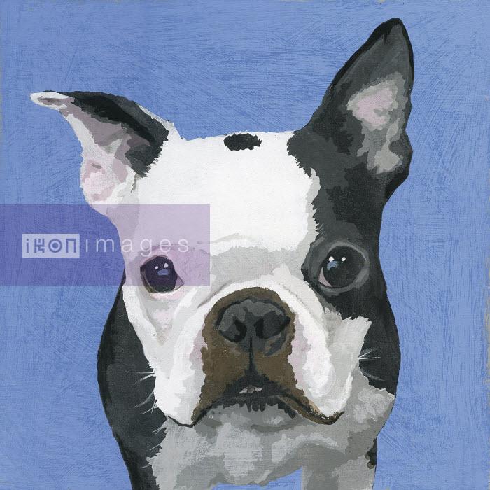 Painting of French Bulldog dog - Andy Bridge