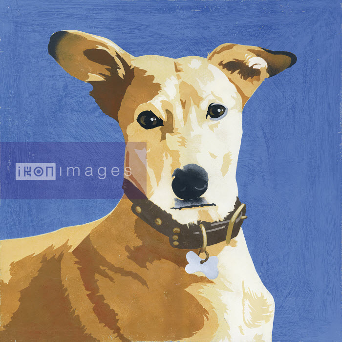 Painting of Pharaoh Hound dog - Andy Bridge