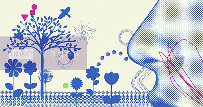 Woman smelling flowers - Woman smelling flowers - James Taylor