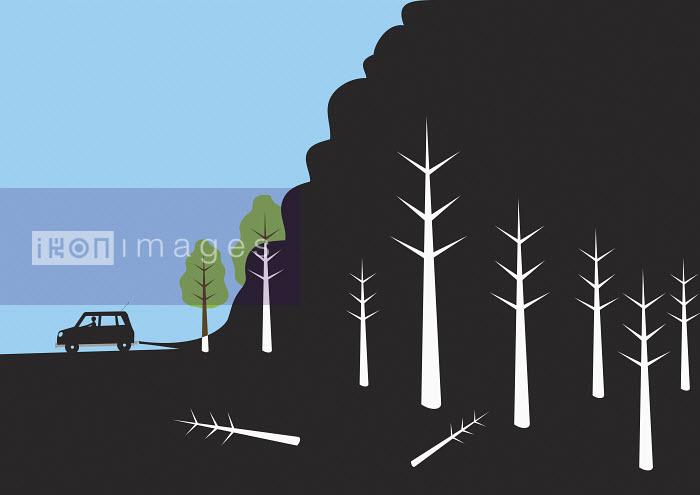 Car parking near woods - Car parking near woods - Oscar Armelles