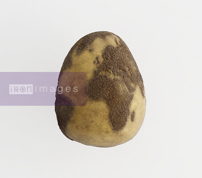 Close up of potato with skin colored like map - Close up of potato with skin colored like map - Justin Metz