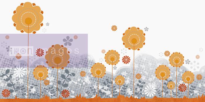 Yee Ting Kuit - Summer flowers