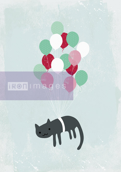 Yee Ting Kuit - Cat being lifted in the air by helium balloons