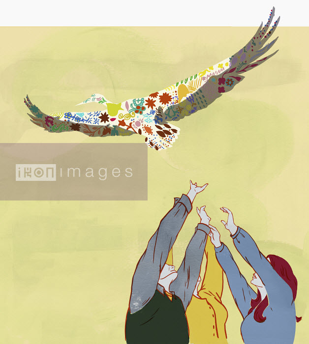 Hands reaching for bird overhead - Hands reaching for bird overhead - Katherine Siy