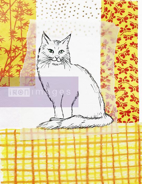 Stephanie Levy - White cat