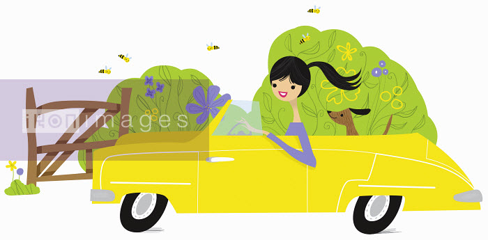 Carefree woman and dog in yellow convertible in countryside - Carefree woman and dog in yellow convertible in countryside - Nila Aye