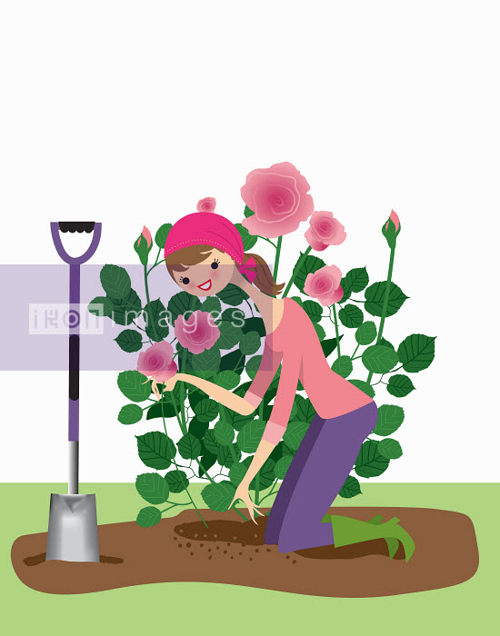 Nila Aye - Woman planting rose bush in garden