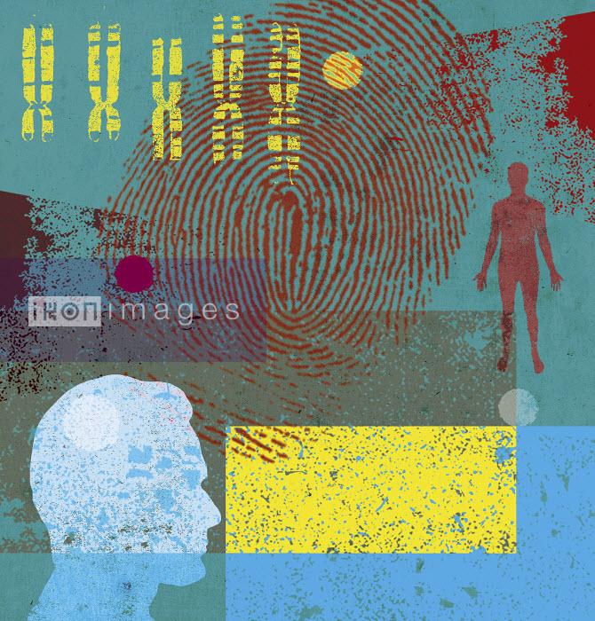 Lee Woodgate - Man, chromosomes and fingerprint