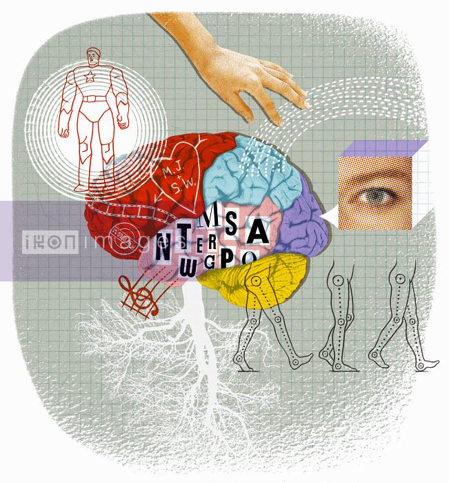 Lizzie Roberts - Brain activity and creativity