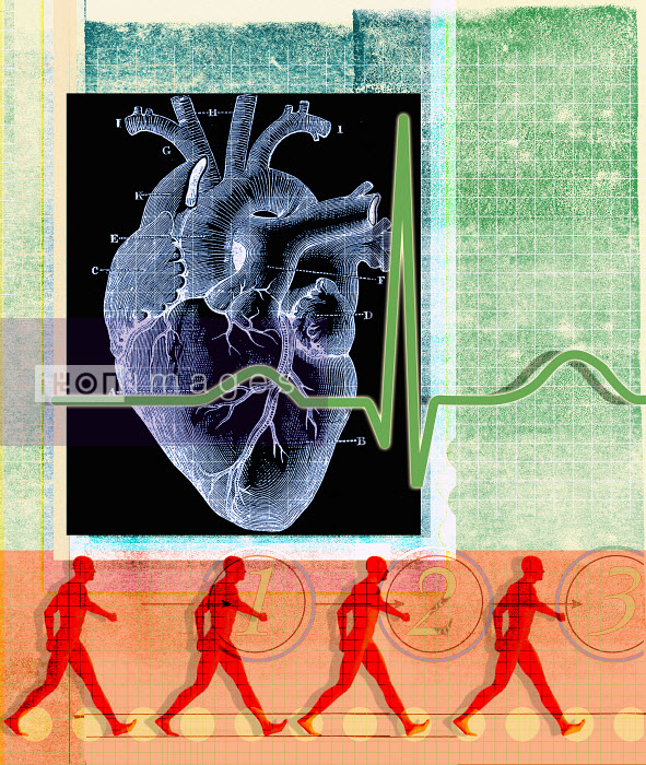 Roy Scott - Human heart and pulse trace with walking man