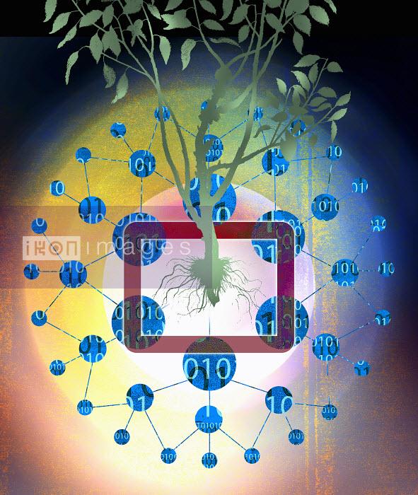 Roy Scott - Binary code data around tree growing from digital tablet
