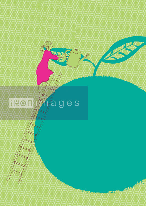 Woman on ladder watering large apple - Woman on ladder watering large apple - Trina Dalziel
