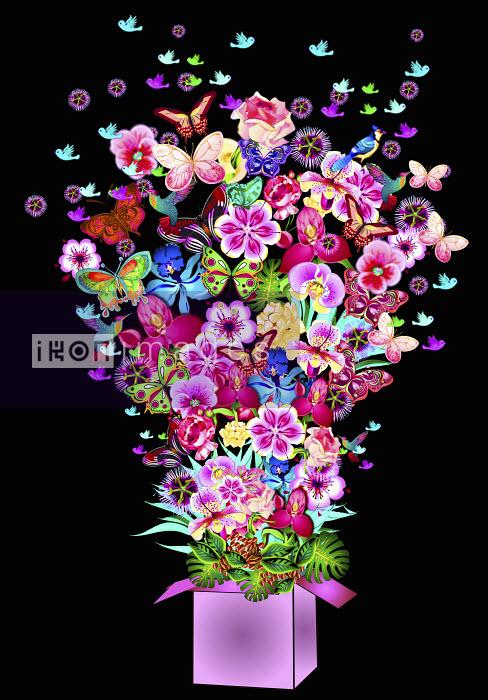 Abundance of bright flowers, butterflies and birds bursting from gift box - Abundance of bright flowers, butterflies and birds bursting from gift box - Coral Hernandez Finol