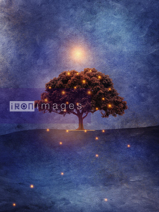 Glowing lights shining around single tree - Glowing lights shining around single tree - Viviana Gonzalez