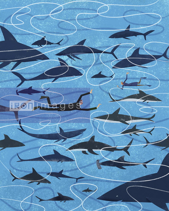 Businessman and businesswoman swimming in shark infested water - Businessman and businesswoman swimming in shark infested water - Gregory Baldwin