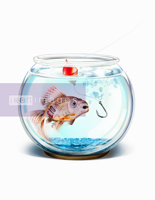 Fish hook trying to catch British pound goldfish in fishbowl - Fish hook trying to catch British pound goldfish in fishbowl - Derek Bacon
