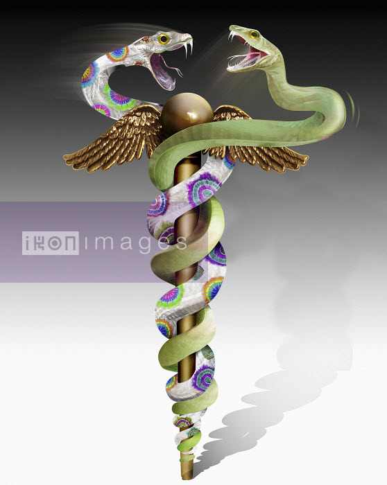 Green and multicolored snakes fighting on caduceus - Green and multicolored snakes fighting on caduceus - Derek Bacon