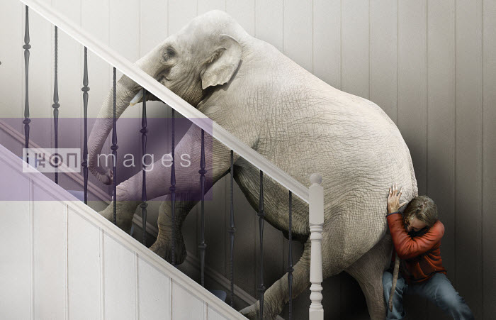 Man struggling to push elephant up stairs - Derek Bacon
