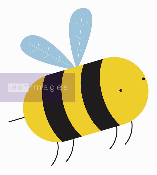 Close up of cartoon bee - Close up of cartoon bee - Chris Gilleard