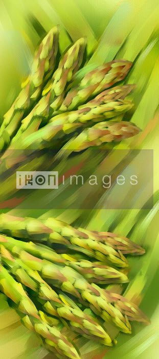 Bunches of asparagus - Bunches of asparagus - Barry Patterson