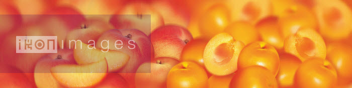 Close up of slices of fresh peaches and apricots - Close up of slices of fresh peaches and apricots - Barry Patterson