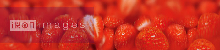 Close up of fresh strawberries - Close up of fresh strawberries - Barry Patterson