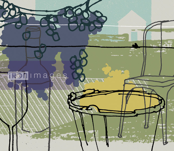 Purple grapes growing on grapevine with table, chair, wine bottle and wine glass in vineyard - Purple grapes growing on grapevine with table, chair, wine bottle and wine glass in vineyard - Kavel Rafferty