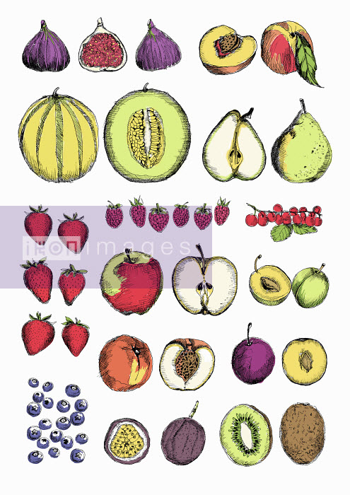 Rows of different fruit whole and cut in half - Rows of different fruit whole and cut in half - May Van Milligan