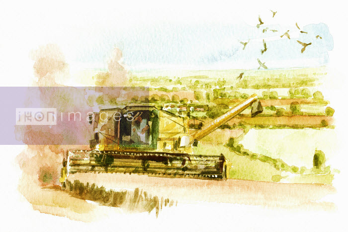 Watercolor painting of combine harvester in countryside - Watercolor painting of combine harvester in countryside - Philip Bannister