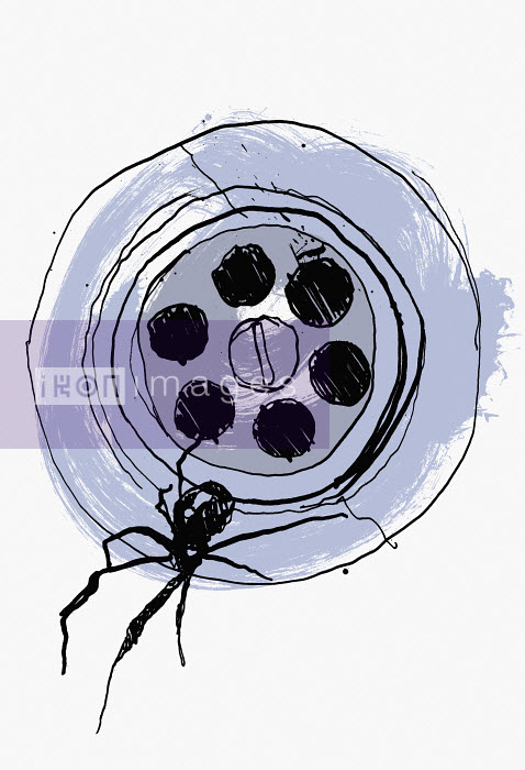 Close up drawing of spider in sink plug hole - Close up drawing of spider in sink plug hole - Ben Tallon
