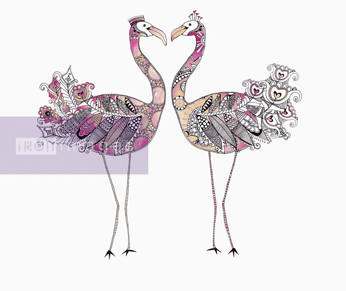 Two flamingos face to face forming heart shape with ornate patterned feathers - Hannah Davies