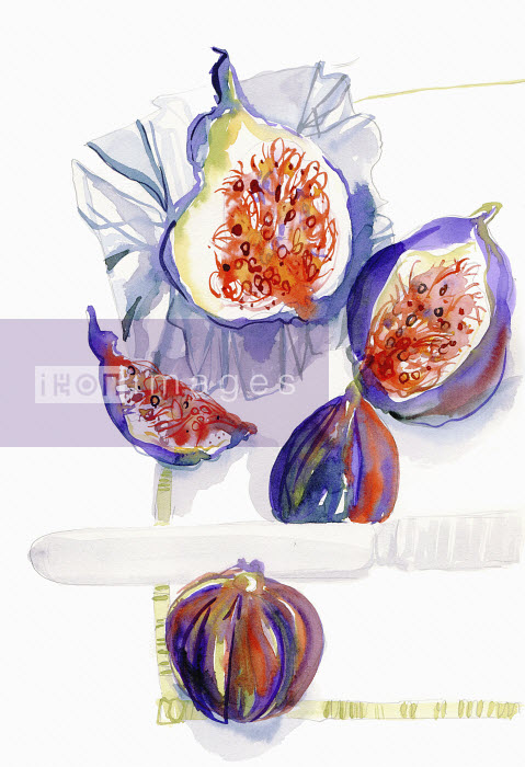Watercolor painting of whole and halved fresh figs - Hannah Clarke