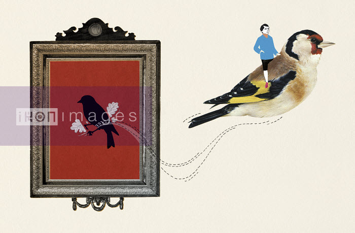 Valero Doval - Man riding on back of goldfinch escaping from painting in frame