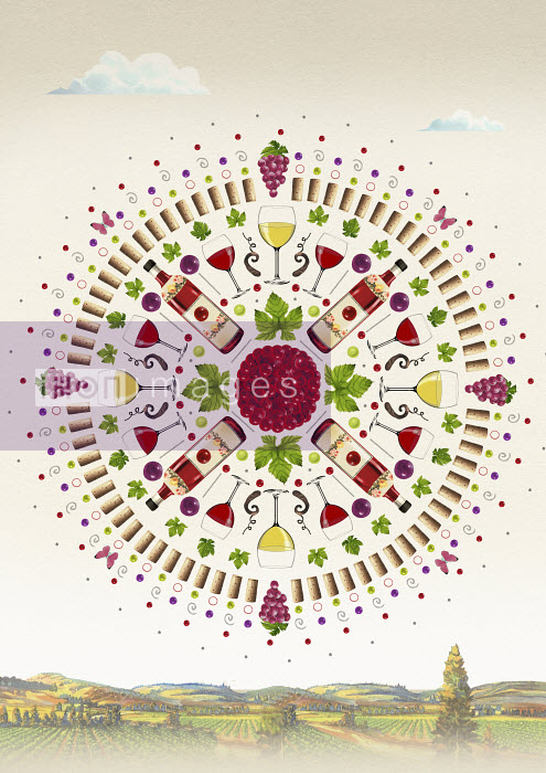 Valero Doval - Wine and grapes in viticulture symmetrical circle pattern above vineyard