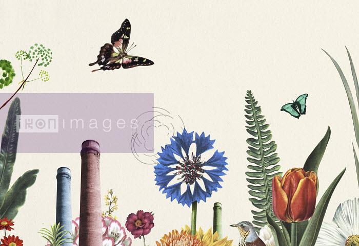 Valero Doval - Butterflies and flowers in front of smokestacks