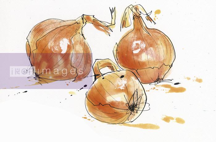 Louise Morgan - Three onions