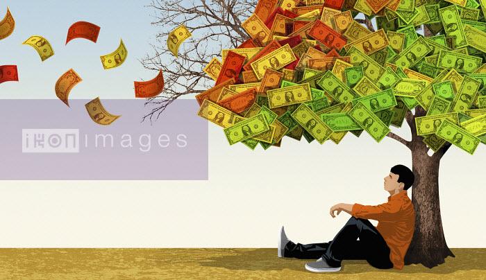 Young man sitting under dollar money tree - Young man sitting under dollar money tree - Taylor Callery