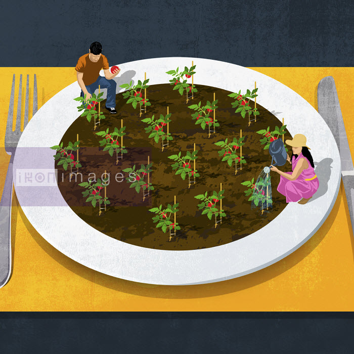 Couple gardening on large plate - Couple gardening on large plate - Taylor Callery