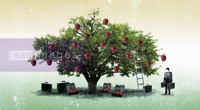 Businessman at apple tree with briefcases and ladder - Businessman at apple tree with briefcases and ladder - Patric Sandri