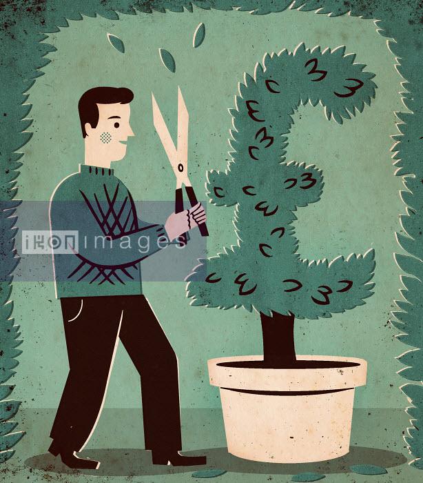 Man pruning British Pound tree - Man pruning British Pound tree - Adam Howling
